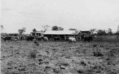 125 years ago in Coopers Plains, 10 February 1896