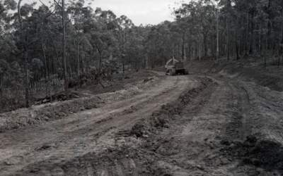 75 years ago in Coopers Plains, 30 January 1946